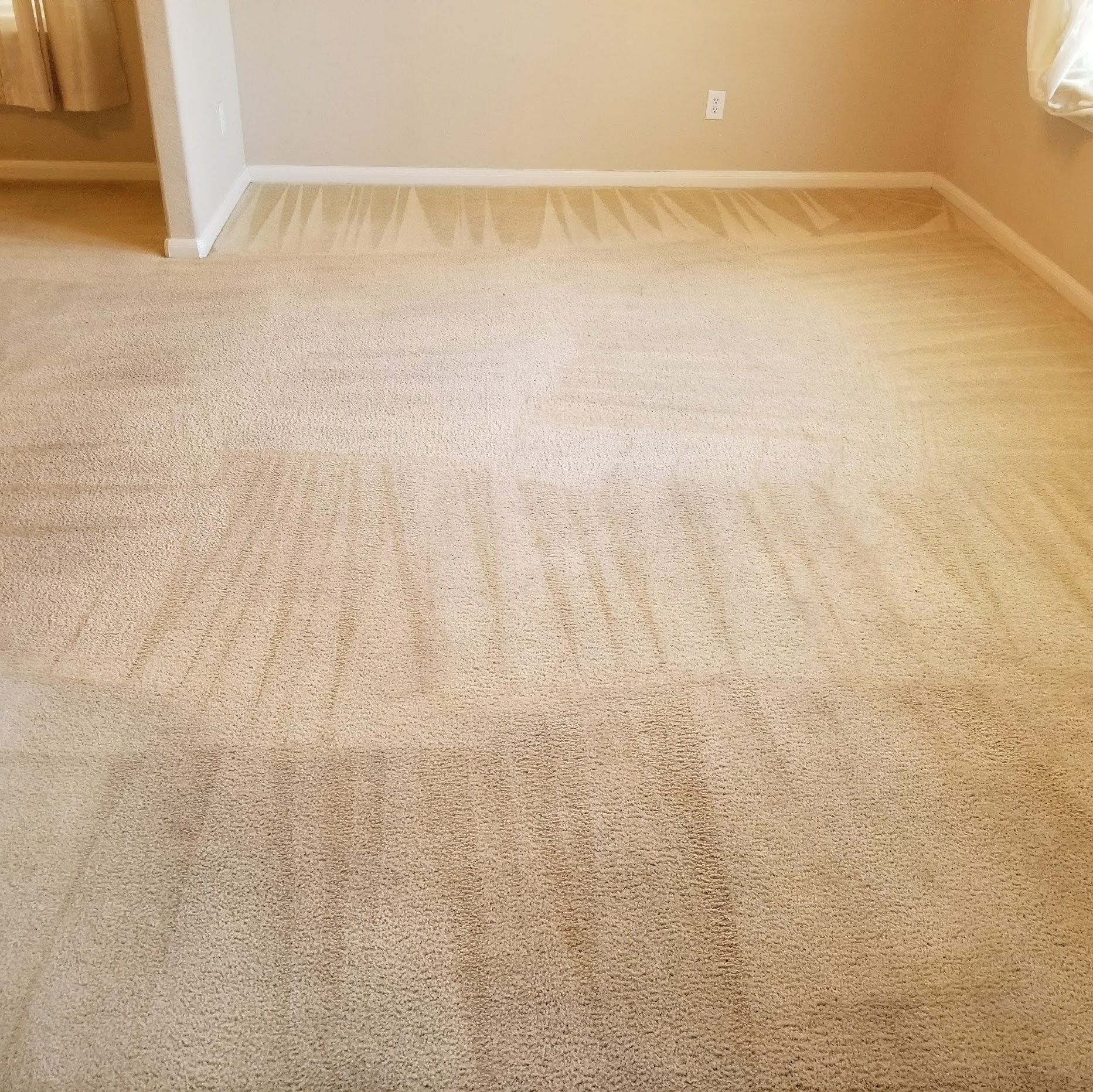 Carpet Cleaning Galveston 20 Room Best Special Deal